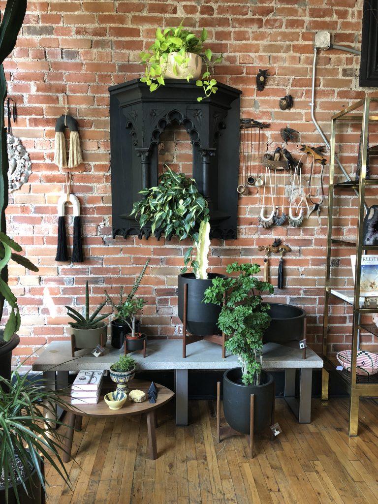 Sacred Thistle boutique in Denver, Colorado